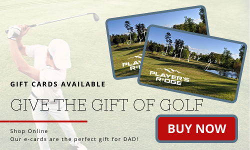 Father's Day Gift Cards